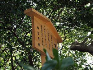 今も新しい制札(定書)、河原神社(豊受大神宮 摂社)