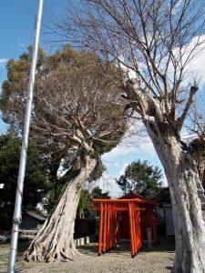 浅間神社のお稲荷さん(伊勢市大世古)