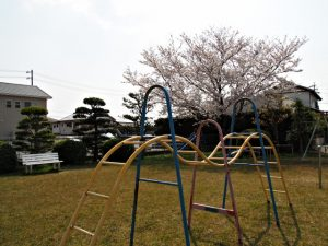 お花見ウォーキング伊勢2019