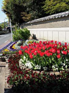 みやざき花畑から望む国史跡 旧豊宮崎文庫方向