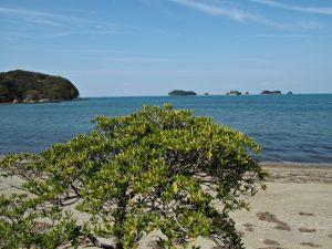 旅荘 海の蝶のプライベートビーチ付近から望む飛島方向