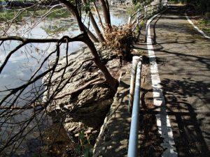 松下社付近の池に落ちていた小鳥居(伊勢市二見町松下)