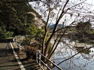 松下社付近の池と榊巻(伊勢市二見町松下)