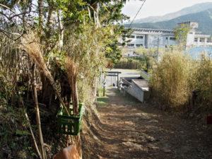 赤井神社の参道からの風景(伊勢市上野町)