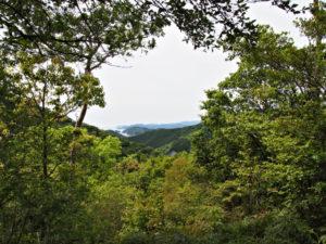 沖見平(荷坂峠〜登り口)からの眺望