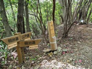 「熊野古道伊勢路07 荷坂峠07/12」道標付近、江戸道と明治道の分岐