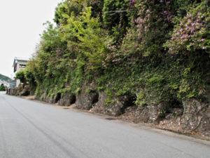 防空壕跡(荷坂峠登り口〜道の駅紀伊長島マンボウ付近)