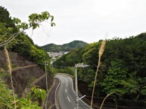 平方峠付近からの眺望