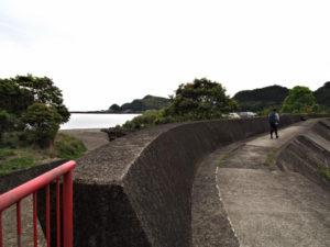 道瀬海岸の堤防