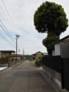 鳥居[6]付近〜徳圓寺(濃州道)