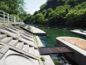 立梅用水の取水口と井堰(櫛田川)