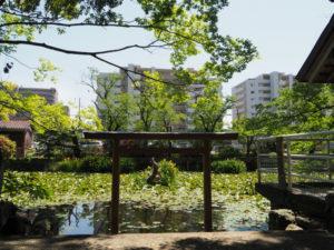 朧ヶ池に戻されていた鳥居、船江上社(伊勢市船江)