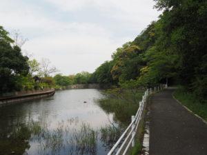 松下社付近の池(伊勢市二見町松下)