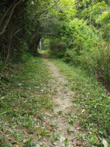 草が刈られていた参道へのアプローチ、神前神社(皇大神宮 摂社)