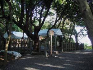 上棟祭の朝、粟皇子神社(皇大神宮 摂社)