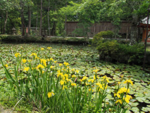 姿見の池、丹生山神宮寺(多気郡多気町丹生)