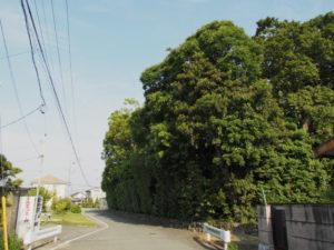 志宝屋神社(豊受大神宮 末社)(伊勢市大湊町)