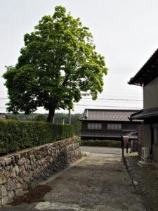 誓願寺から巡見道へ(いなべ市藤原町大貝戸)
