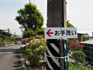 鳴谷神社への分岐〜坂本公会堂(巡見道)