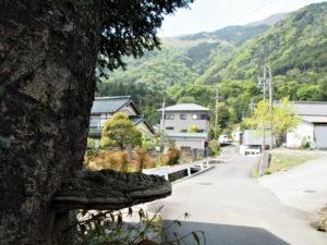 敬善寺付近からのミスコース
