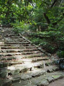 古殿地への石階、度会大国玉比賣神社(豊受大神宮 摂社)