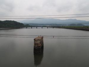 汐合橋から望む五十鈴川の上流側