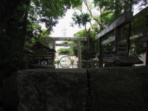 拝殿前から望む茅の輪、日保見山八幡宮(伊勢市大湊)