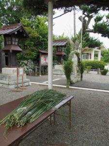 朝から刈られた茅と午後1時頃に完成した茅の輪、日保見山八幡宮(伊勢市大湊)
