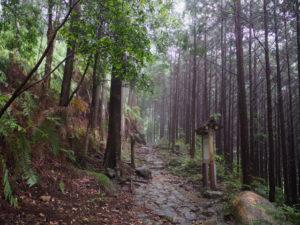 行き倒れ巡礼供養碑付近(熊野古道八鬼山道)