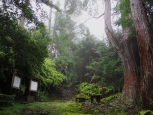 籠立場(熊野古道八鬼山道)
