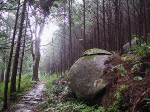 熊野古道八鬼山道