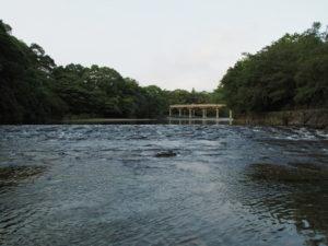 宇治橋(五十鈴川)の遠望