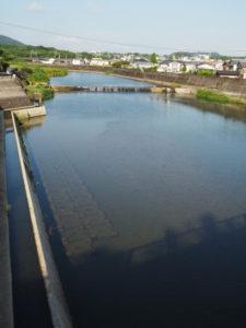 五十鈴橋から望む五十鈴川