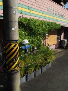 街中で見かけた頭を垂れる稲(伊勢市吹上)