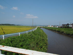 色白橋から望む外城田川の上流方向
