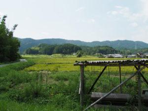 的山公園第2駐車場からの鴨神社方向遠望