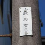 電柱に取り付けられているNTTの識別標[越坂支5]
