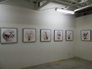 許曉薇写真展「花之器 The Vessel that Blossoms」@gallery0369