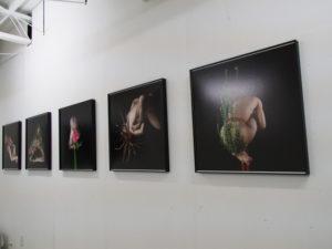 許曉薇写真展「花之器 The Vessel that Blossoms」@gallery0369