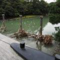 台風19号の被害を防いだ宇治橋の木除杭(五十鈴川)