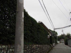 NTT電柱番号板[大麻込1]付近