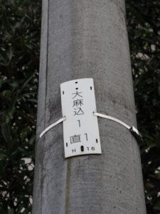 NTT電柱番号板[大麻込1 直1]