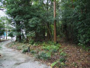 せんぐう館の復旧工事中、茜社への仮設参道が設置されていた場所