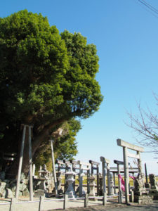 大庭神社(多気郡明和町佐田)