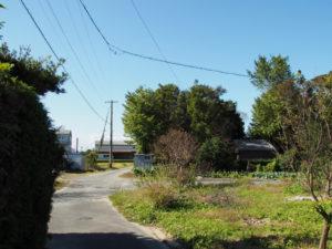前野神社の社叢(多気郡明和町前野)