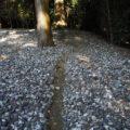 先日に見つけた謎の小径、神服織機殿神社(皇大神宮 所管社)