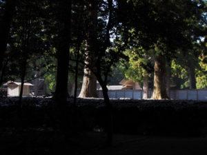 昨日に「親謁の儀」を終え今朝には雨儀廊が姿を消していた外宮
