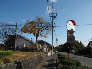 14 和田一里塚跡(東海道 (14)和田)