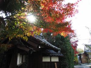 9 幸福寺(東海道 (14)和田)