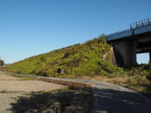 ミスコースして、JR関西本線 山野原踏切の先へ